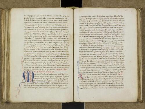 Summa ex libris legum olim vulgariter promulgata, et a magistro Ricardo Pisano a vulgari in latinum noviter translata