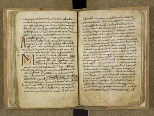 Homeliae sancti Augustini in epistolam sancti Johannis